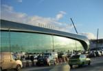 Ветеринарный и фитоконтроль в аэропорту Домодедово
