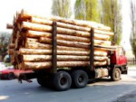 Транспорт для перевозки леса